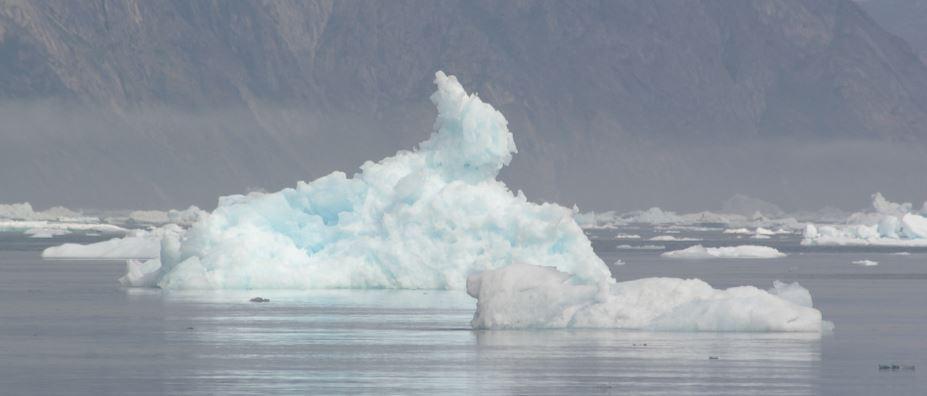 Kæmpe iskanin i Diskobugten